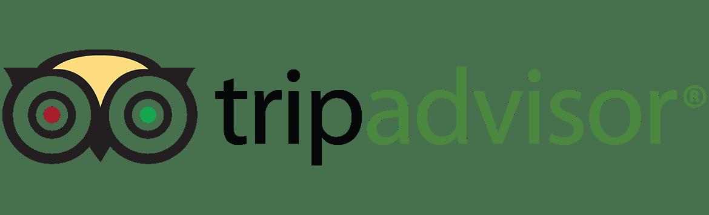 TripAdvisor-logo (1)